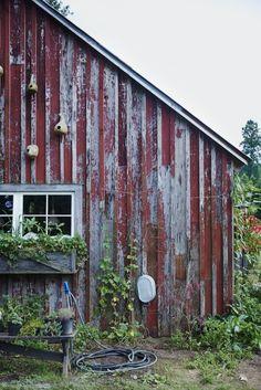 Blackberry Farm's garden shed | Williams-Sonoma Taste ..... garden stuff