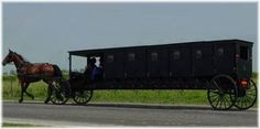 parti bus, funny pictures, amish life, prom night, funni, lakes, party bus, fashion statements, amish limo