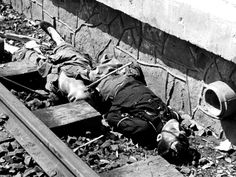 """Caption: """"Chinese civilians, shot by Imperial Japanese forces on the platform of Shanghai Railway Station during the Battle of Shanghai, lie dead next to the tracks. The battle lasted over three months and was one of the largest and bloodiest battles of the entire Second Sino-Japanese War. Shanghai, Republic of China. August 1937."""""""
