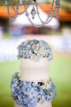 Cake and hydrangeas!