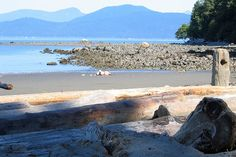 Wreck Beach, Vancouver, Canada Take the steep sylvan steps down to the only clothing optional beach in Vancouver. Situated between Locarno Beach and the endowment lands of the University of British Columbia, Wreck Beach is a stretch – almost 8km (5 miles) – of pristine wilderness in the City of Glass.  And a volunteer organisation ensures it stays that way. The beach goers are a mix of students, families and committed bare bathers. Beach vendors sell everything from sun block to buffalo burgers.