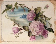 Victorian Graphic - Pink Cabbage Roses - The Graphics Fairy