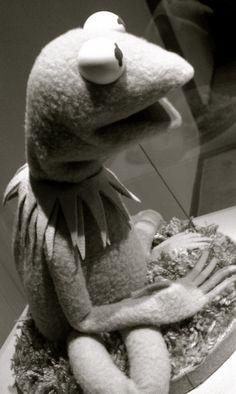 kermit the frog <3