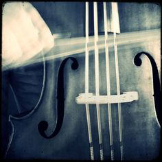 """When a mysterious man leaves his cello at a bus stop, a woman struggles between the yearning to play it and the desire to find its rightful owner.  """"I Had a Cello"""" by Miriam C. Daum"""