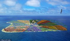 Plastic paradise: Scientists plan to turn Pacific Ocean waste into a floating island