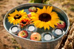 field, sunflowers and apples, idea, float appl, centerpiec, sunflower and apples, dinner parties, candl