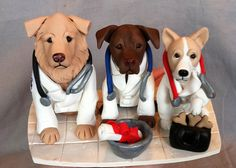 so cute. vet school graduations cake?