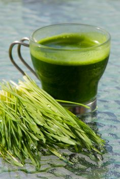 Wheat grass - Wheat grass is the sprouted grass of a wheat seed. Unlike the whole grain, because it has been sprouted, it no longer contains gluten or other common allergic agents. Wheat grass is super alkalizing and is excellent for promoting healthy blood. It normalizes the thyroid gland to stimulate metabolism thus assisting digestion and promoting weight loss due also to its high enzyme content and cleansing effect.