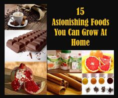 15 Astonishing Foods You Can Grow At Home