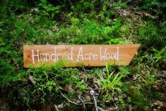Easy DIY Hundred Acre Wood sign to direct party-goers to your Pooh themed party.