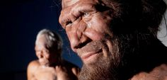 Neanderthals and modern humans were both living in Europe for between 2,600 and 5,400 years, according to a new paper published in the journ...