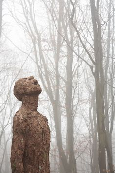 Surreal Bark Sculpture Tastes the Rain - My Modern Metropolis