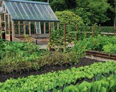 veggie garden ideas on Pinterest Vegetable Garden Design