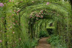 secret gardens, walks, walkways, dream, arbors, green, garden paths, roses, place
