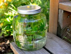 herbal sun tea from