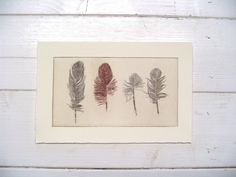 original etching of a feather, hand pulled.  - Fleurografie