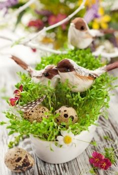 Easter decoration: birds and eggs on the fresh cress Stock Photo