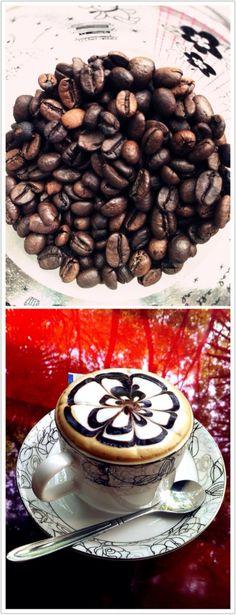 coffee beans & coffee