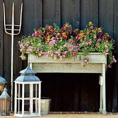 Fill a Big Container   Spectacular Container Gardening Ideas - Southern Living
