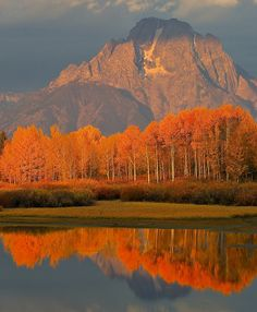 Fall in Jackson Hole, Wyoming, USA