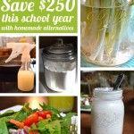 Save $250 This School Year - homemade alternatives