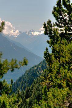 Hiking on the Zirbenweg Trail above Innsbruck. #austria #tirol #igls #patscherkofel #hiking #visitaustria
