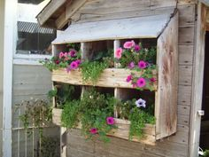 chicken coop boxes and planters