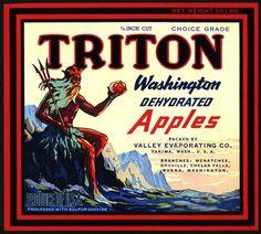 Choice Grade Triton Apples