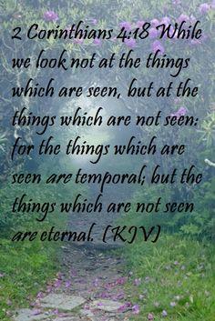 2 Corinthians 4:18 (KJV)