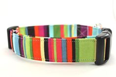 Dog collar for her canine friends! $16.00