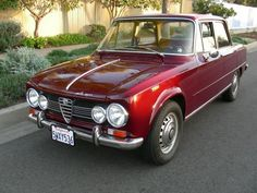 Alfa Romeo 1600