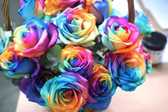 Real Rainbow Roses!