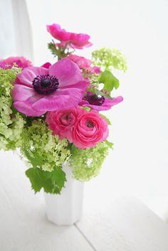 Flower: Beautiful