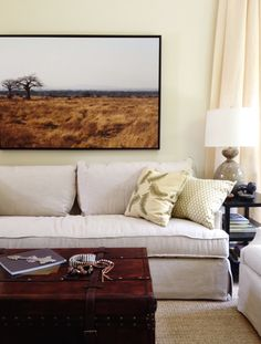 Animal Lovers' Living Room Before & After. Large scale photography art and trunk on wheels coffee table