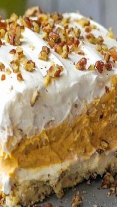 Layered Pumpkin Dessert - With a pecan layer, cream cheese layer, pumpkin and pudding layer and a Cool Whip layer on top, it's sure to be a hit at your home! What I love most about these layered desserts, is that they are so easy and usually look like they took hours and hours to make – a great way to impress the guests..
