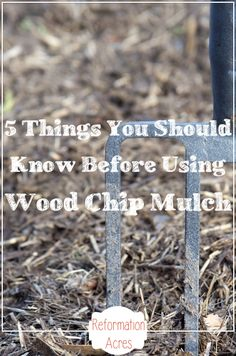 Thinking about the pros and cons of wood chip mulching for your annual vegetable garden this year?  Here are 5 things you should know before spreading wood chips over  your garden.