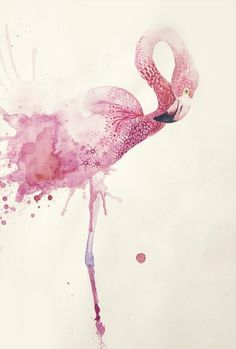 #flamingo Animal Art