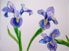 Iris in Watercolor with Pen and Ink