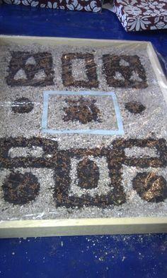 My mini tudor knot garden for my old year 5 tudor project.