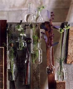 I spy...my next DIY! Hanging foliage vases collection by Roost.