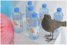 Bird Printable Water Bottle Labels by @catherinesparty #labels #water