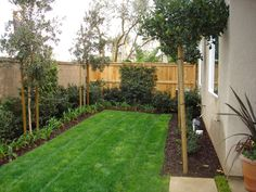 Beautiful landscaping for a small yard