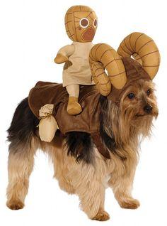 Star Wars Bantha Costume