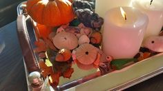 Everything Coastal....: Shells and Tiny Pumpkins Create A Fall Centerpiece