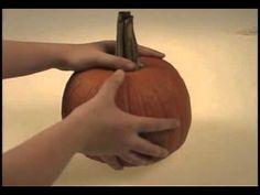 ▶ Pumpkin Life Cycle - YouTube