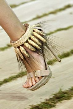 these can be my harvest shoes...