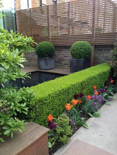 Shelley Hugh- Jones Garden Design