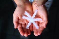 Kids Craft: Borax Crystal Snowflakes