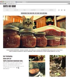 Cats go Raw | Bones and Raw Food Diet for your Pet