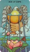 Ace of Cups from the Morgan Greer tarot